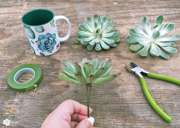 creating a wire stem for a succulent