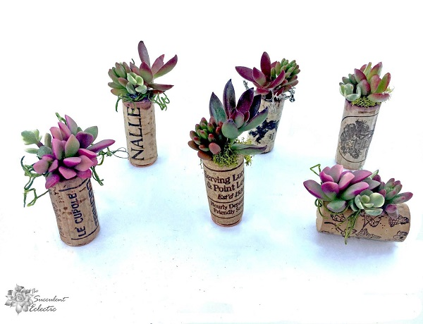 array of succulent magnets in wine corks
