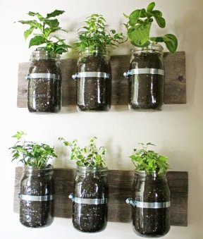 wall planter via apartment therapy