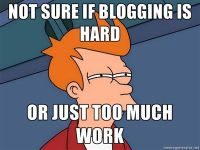 not sure if blogging is hard or just too much work fry meme
