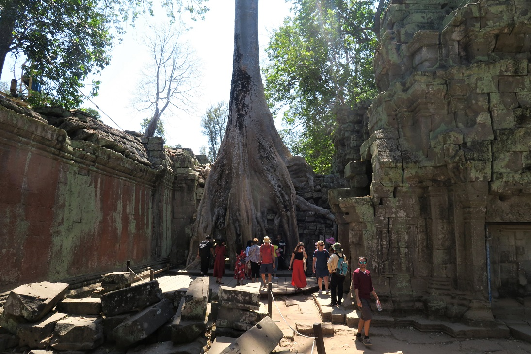 Ta Prohm Budget Breakdown How To Spend Less Than $50 Per Day in Cambodia