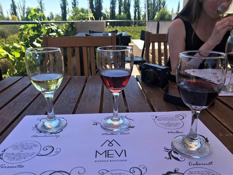 Wine-tasting-in-Mendoza-Budget-Breakdown-Exploring-Buenos-Aires-and-Mendoza-Argentina