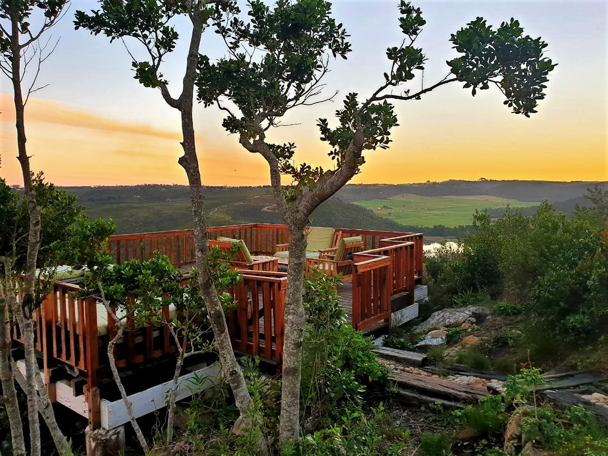 African Array Backpackers Lodge The Budget Traveller's Guide to the Garden Route Road Trip