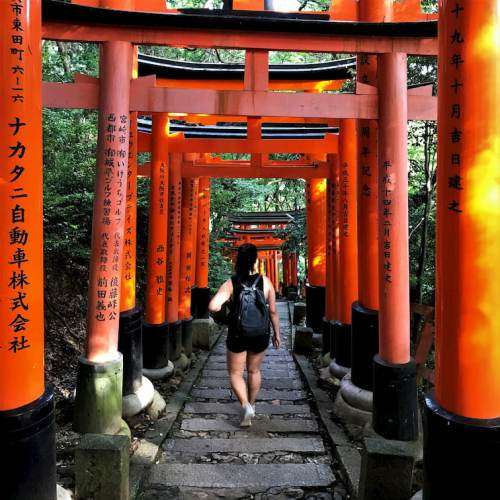 Fushimi Inari Taisha Shrine Budget Breakdown The Cost of Travelling in Japan
