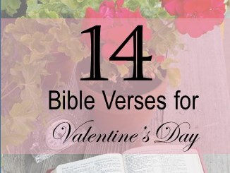 14 Bible Verses for Valentines Day