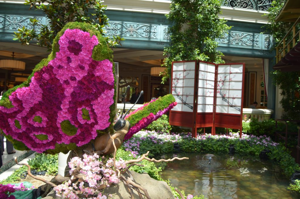Japanese Spring at the Bellagio Conservatory and Botanical Garden is awesome to see!