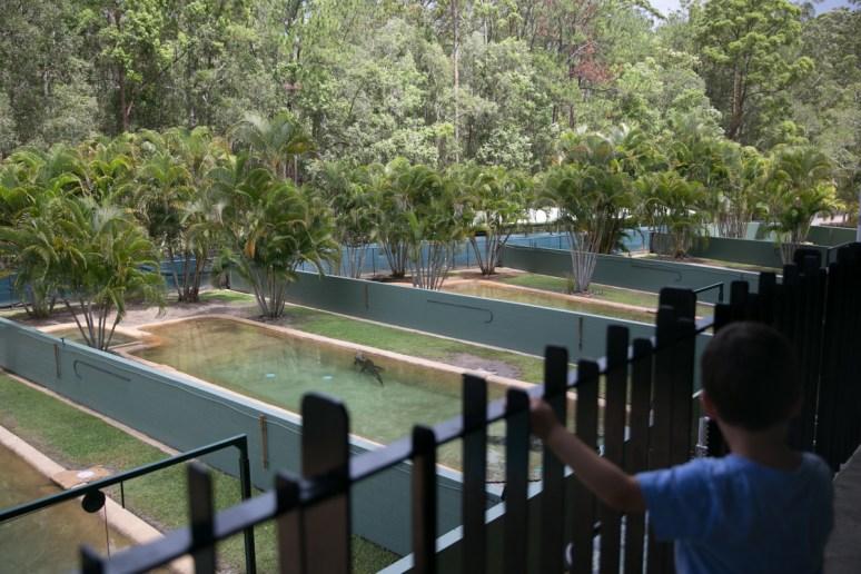 Australia Zoo-16