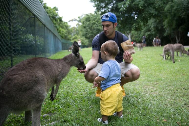 Australia Zoo-26