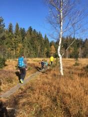 Wandern mit Kindern, The sunnysideofkids, thesunnysideofkids, kerstin ölz, wandern, vorarlberg, vcard, bregenzerwald