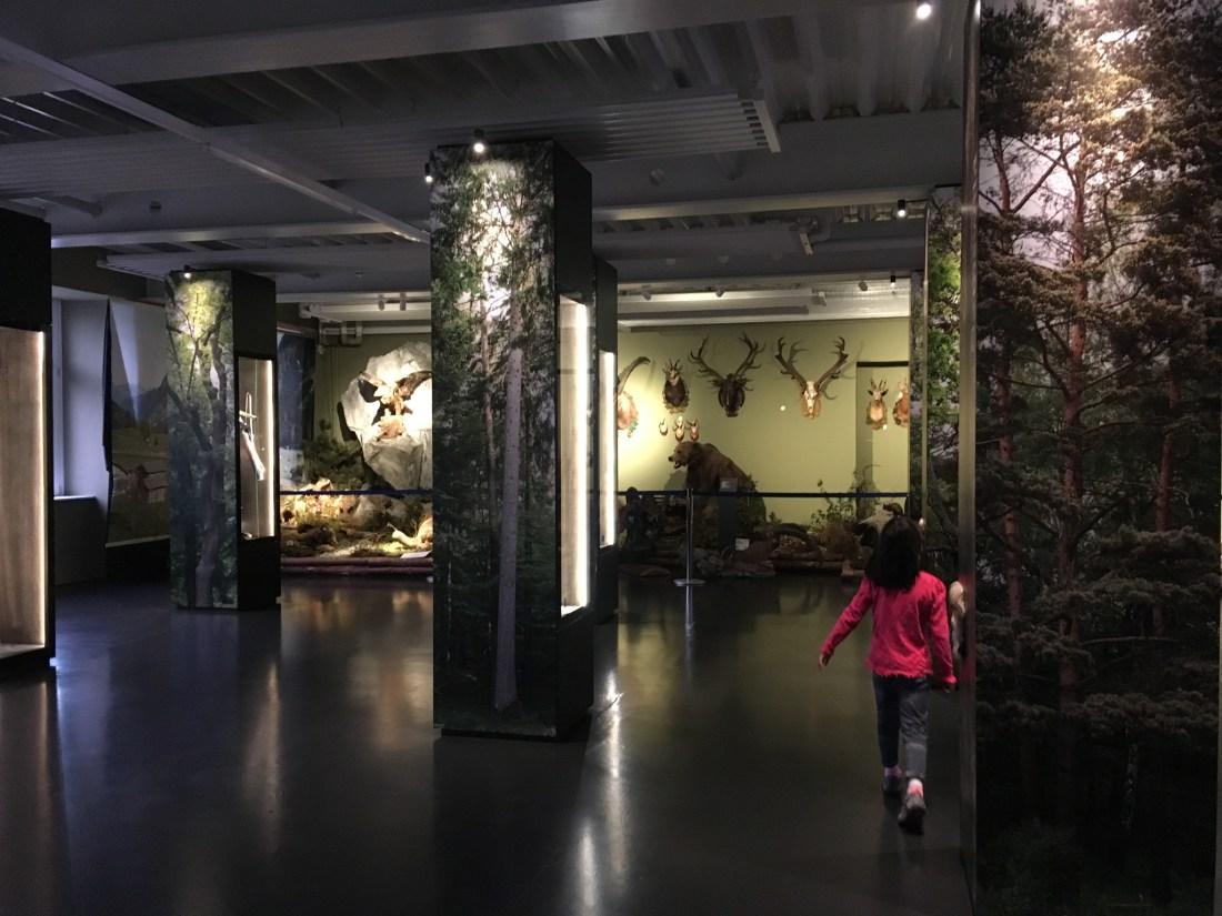 Museumswelt Frastanz, vorarlberger museumswelt, grammphone, jagdmuseum vorarlberg, wohin heute vorarlberg, wohin mit kindern, unternehmungen in Vorarlberg, familienunternehmungen vorarlberg, urlaub in vorarlberg, V Card, ausgestopfter Bär