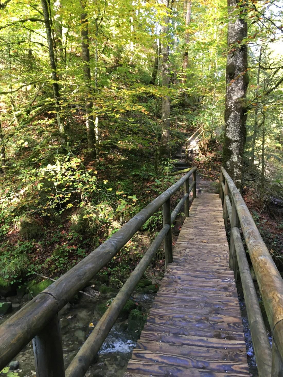 lausbubenweg, Langenegg, schöner Rundweg, vorderer Bregenzerwald