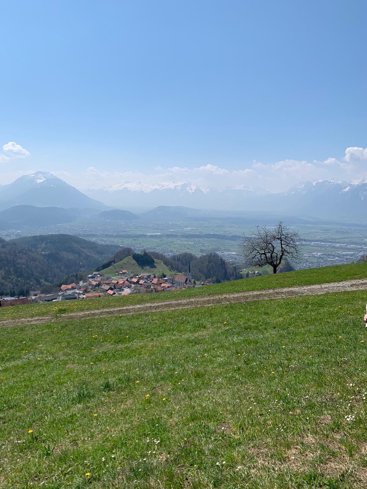 Fraxern, Rheintal