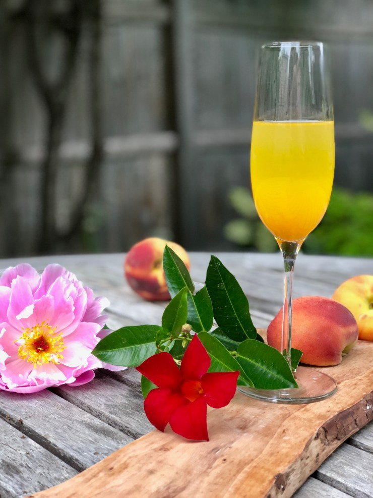 Bellini cocktail photo