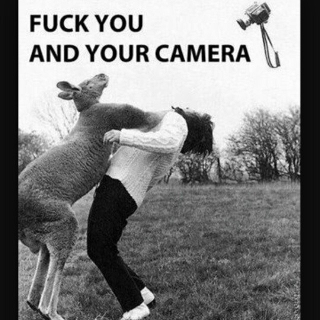 Fuck You and Your Camera