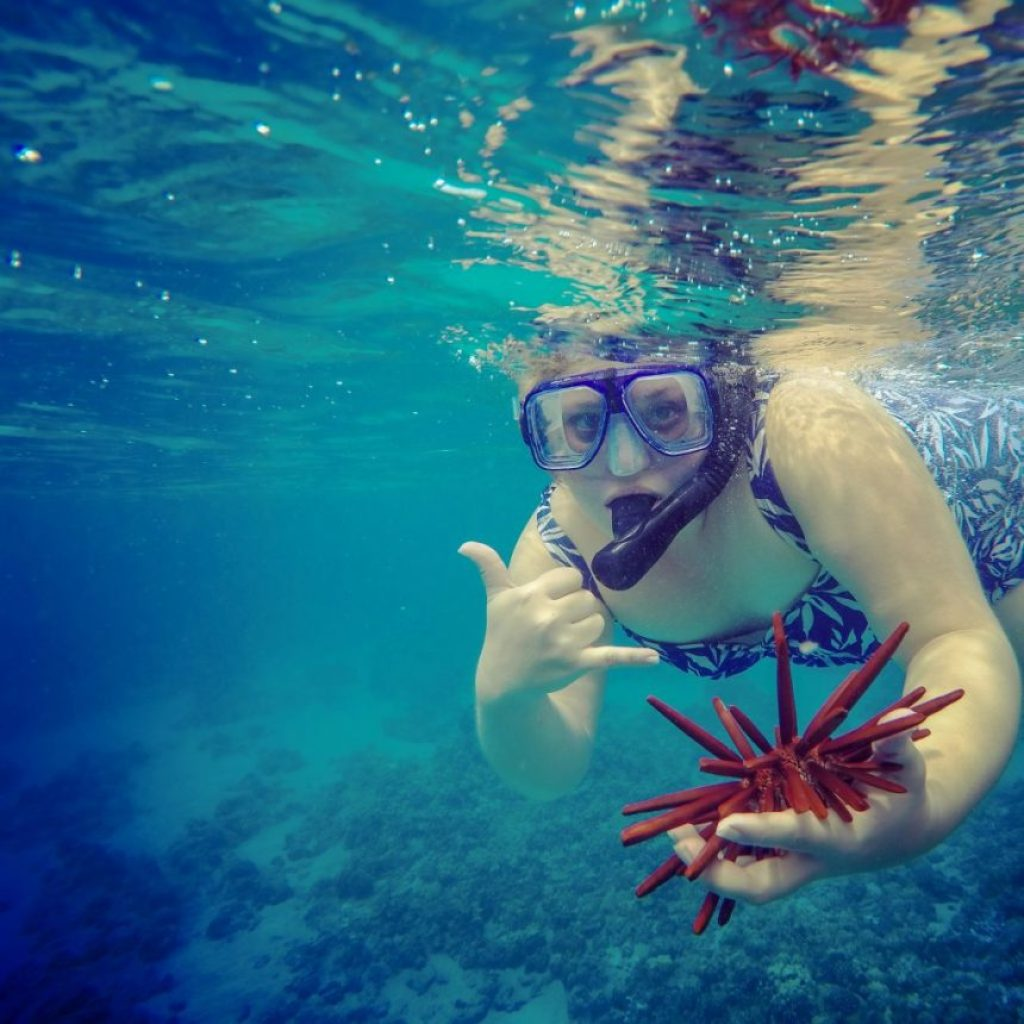 The Sunshine Suitcase Snorkeling in Hawaii- level up your finances and live your dreams