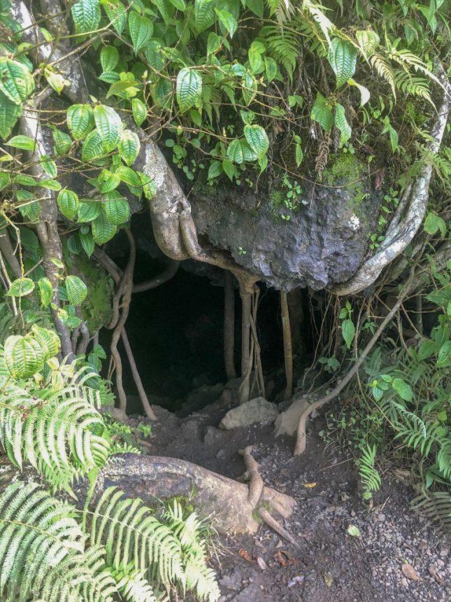 Lava Tube Maui