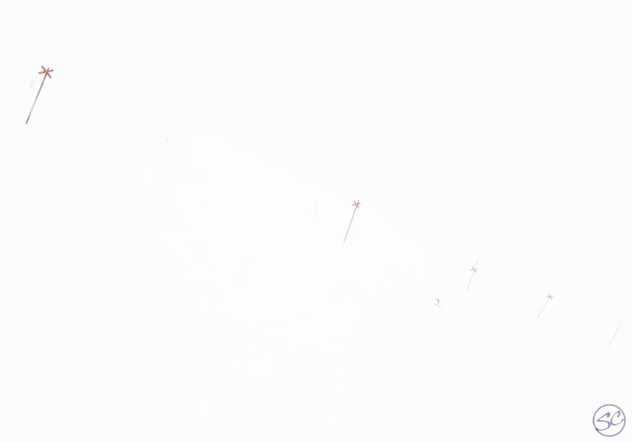 Ski-track whiteout