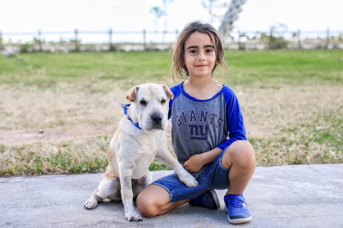 puppy, dog, Sharpei, Shar Pei, rescue dog, rescue puppy, getting a dog, mom blog, mom blogger, mommy blog, mommy blogger, 2018, family blog, parenting blog, the super mom life, thesupermomlife, parenting blogger, family blogger