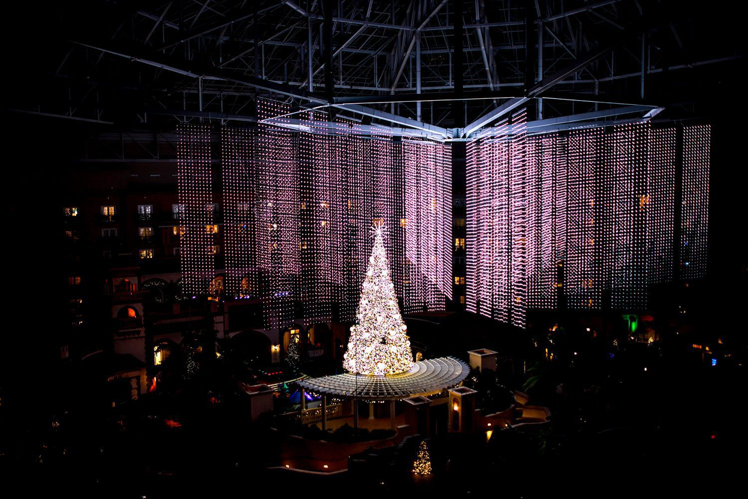 Light show at Gaylord Palms