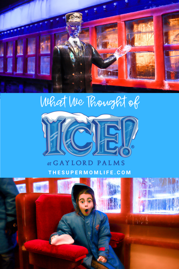 If you're thinking about going to ICE! at Gaylord Palms, check out our review of the good and the bad!