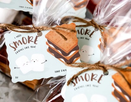 I Need S'more Friends Like You Valentines Day Gifts
