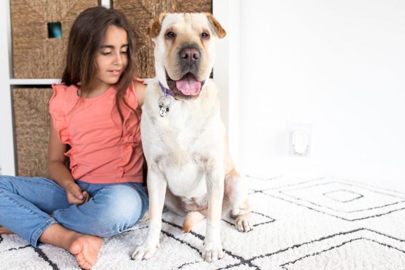 girl and her dog sitting on a rug