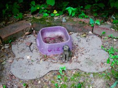 Lily Dale Pet Cemetery Gizmo