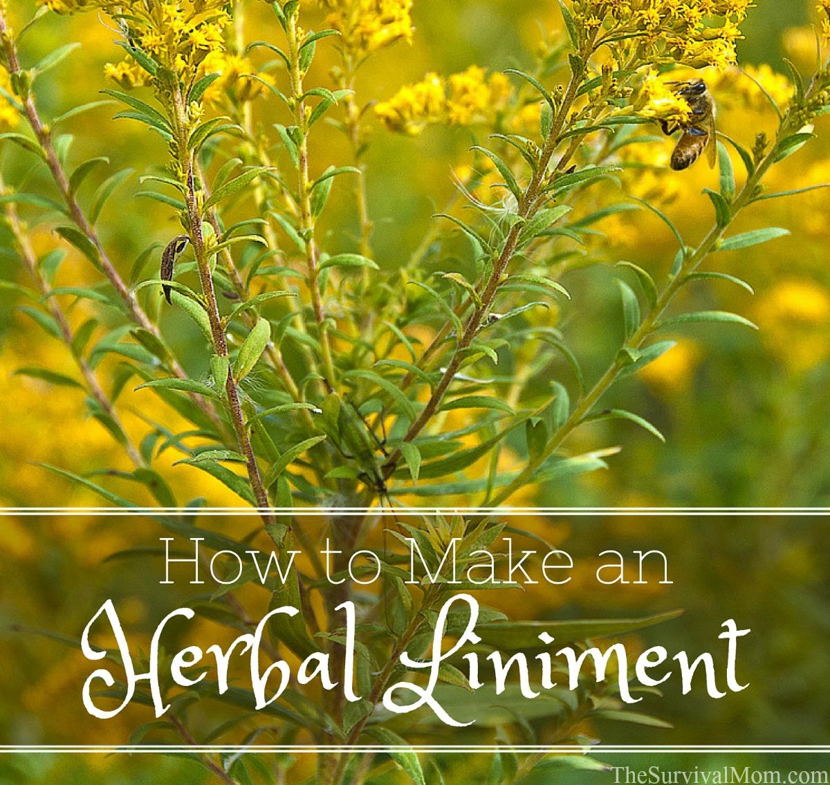 diy herbal liniment FB size