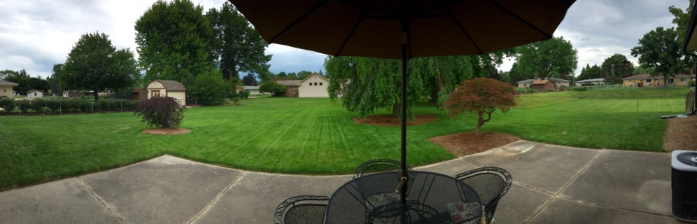 The view from the patio
