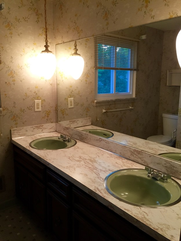 Upstairs bathroom. Yes, we are keeping it green.
