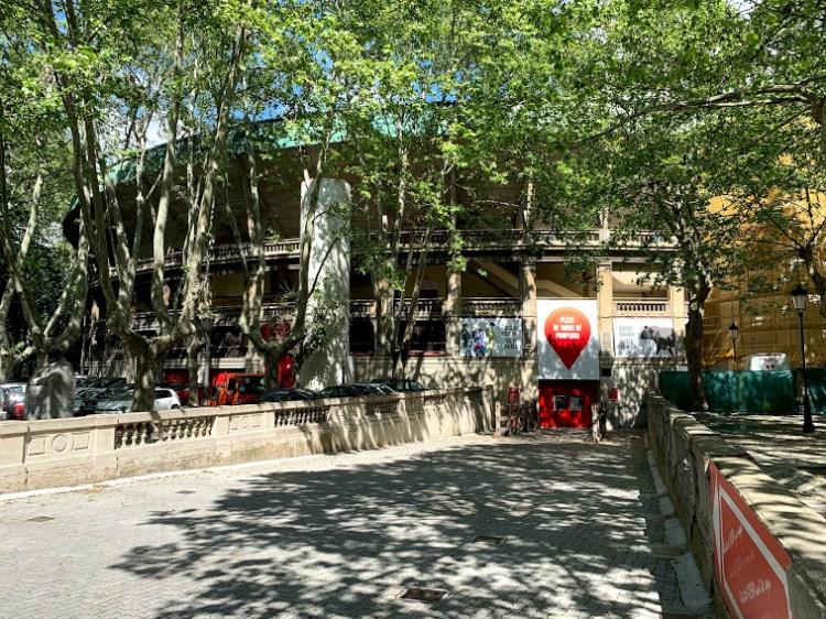 Pamplona Bulls: Camino