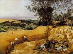 Pieter Brueghel l'ancien, les Moissonneurs