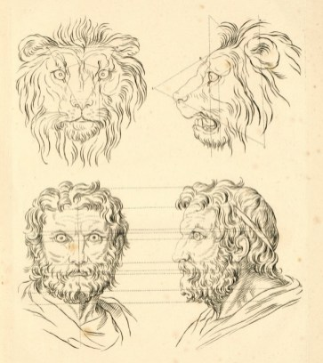 Dissertation sur un traité de Charles Le Brun, concernant le rapport de la physionomie humaine avec celle des animaux - rapport de la figure humaine avec celle du lion