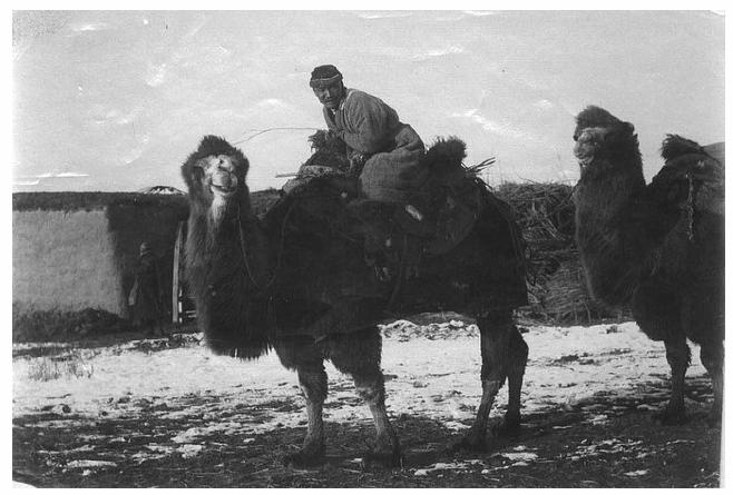 Sven Hedin - expédition
