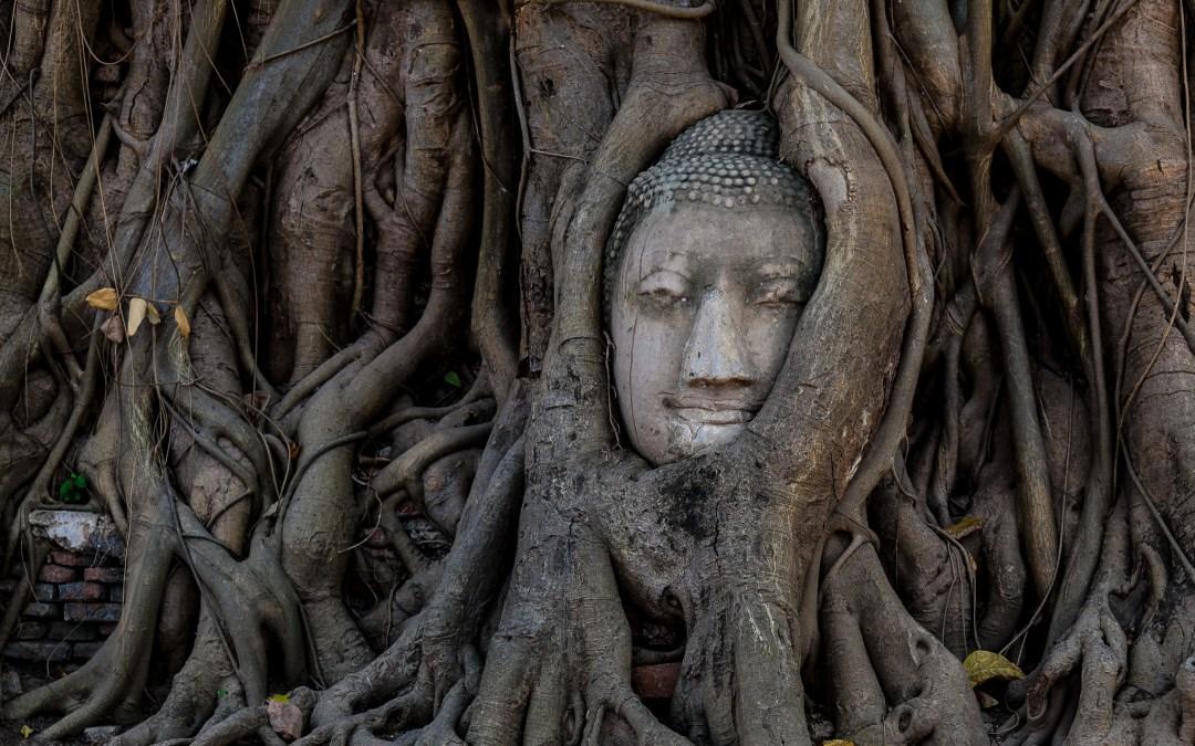 Les reliques de Bouddha du stūpa de Piprahwa