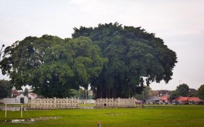 Yogyakarta stories #1 : La ville épique