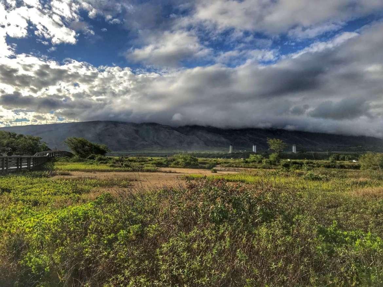 Kealia Pond National Wildlife Refuge in Maui