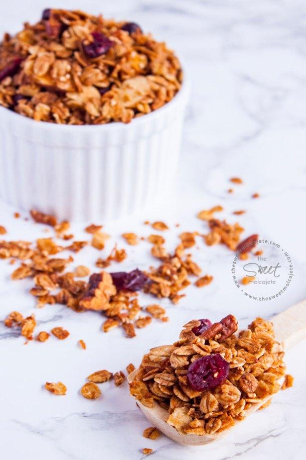 Cucharita de madera copeteada con granola casera. Al fondo se ve la granola dentro de un recipiente de cerámica blanco