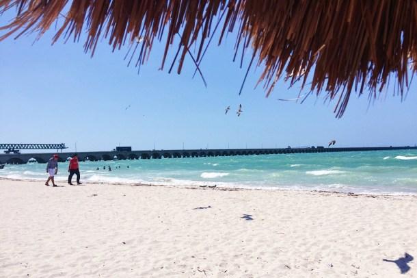 Vista desde una palapa a Puerto Progreso, Yucatán