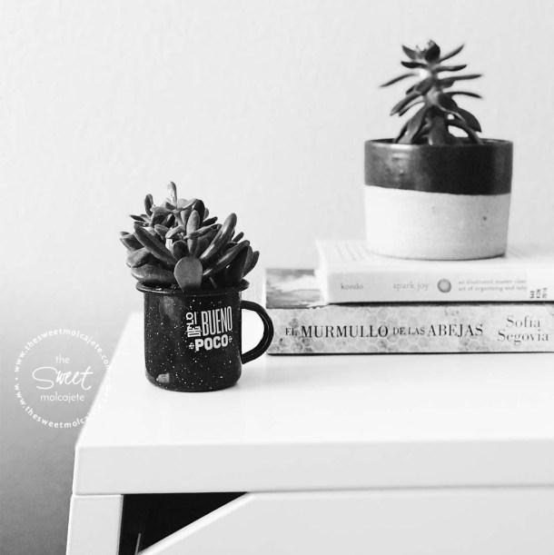 Foto blanco y negro de una mesa de noche minimalista con un par de libros y dos macetitas con suculentas