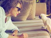 (Source: Taylor Swift's Instagram)