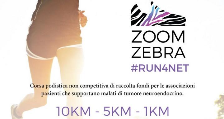 zoomzebra cover