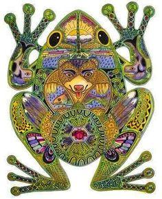 kambo-frog