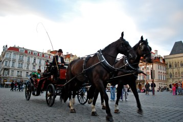 Horse drawn carriage rides around Prague
