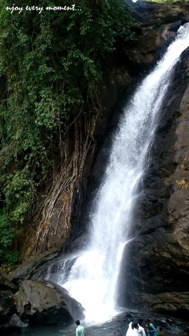 places to see in wayanad-1