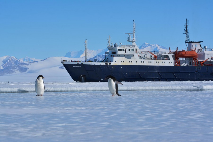 Win a trip to Ross Sea, Antarctica