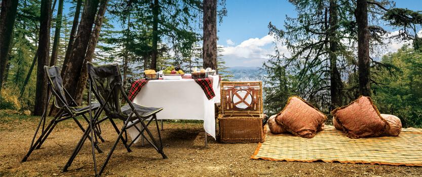 picnic-shimla_things to do in Shimla