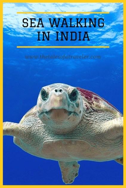 sea walking in India