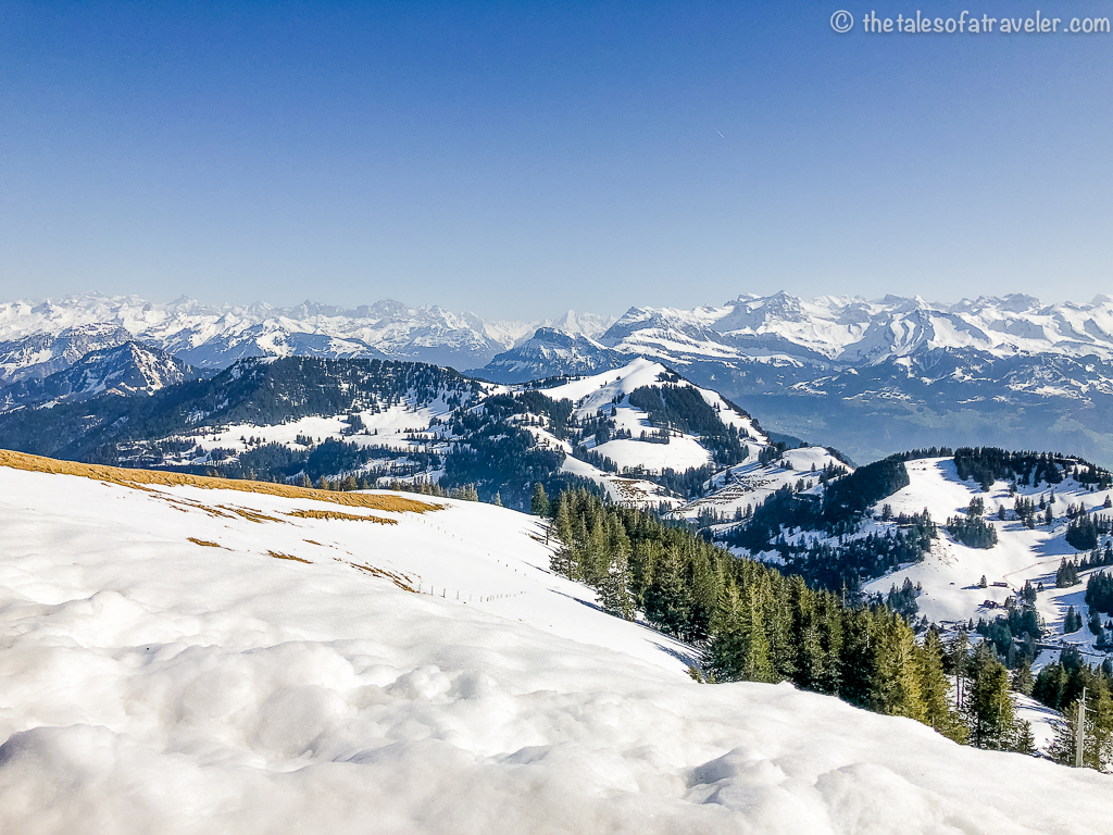 View from Mt. Rigi
