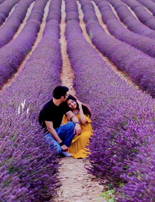 Couple photoshoot Lavender fields